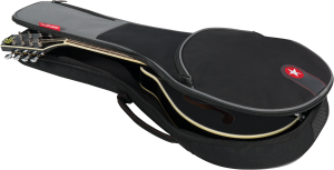 RR1MAN Road Runner Mandolin