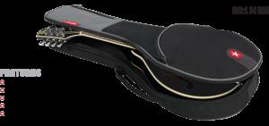 Mandolin Gig Bag Features Road Runner RR1MAN